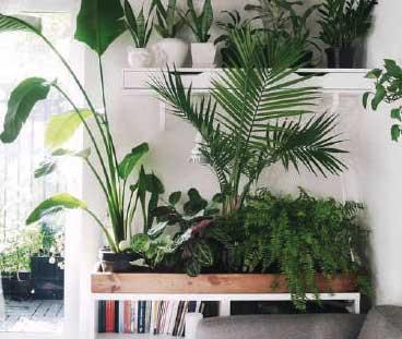 Breda-Botanique-Hotelsuites